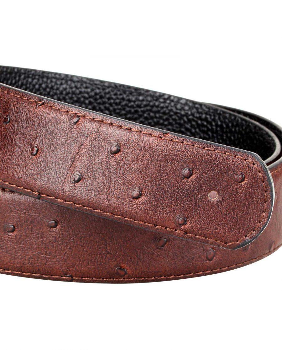 Brown-Ostrich-Belt-Strap-Buckle-mount