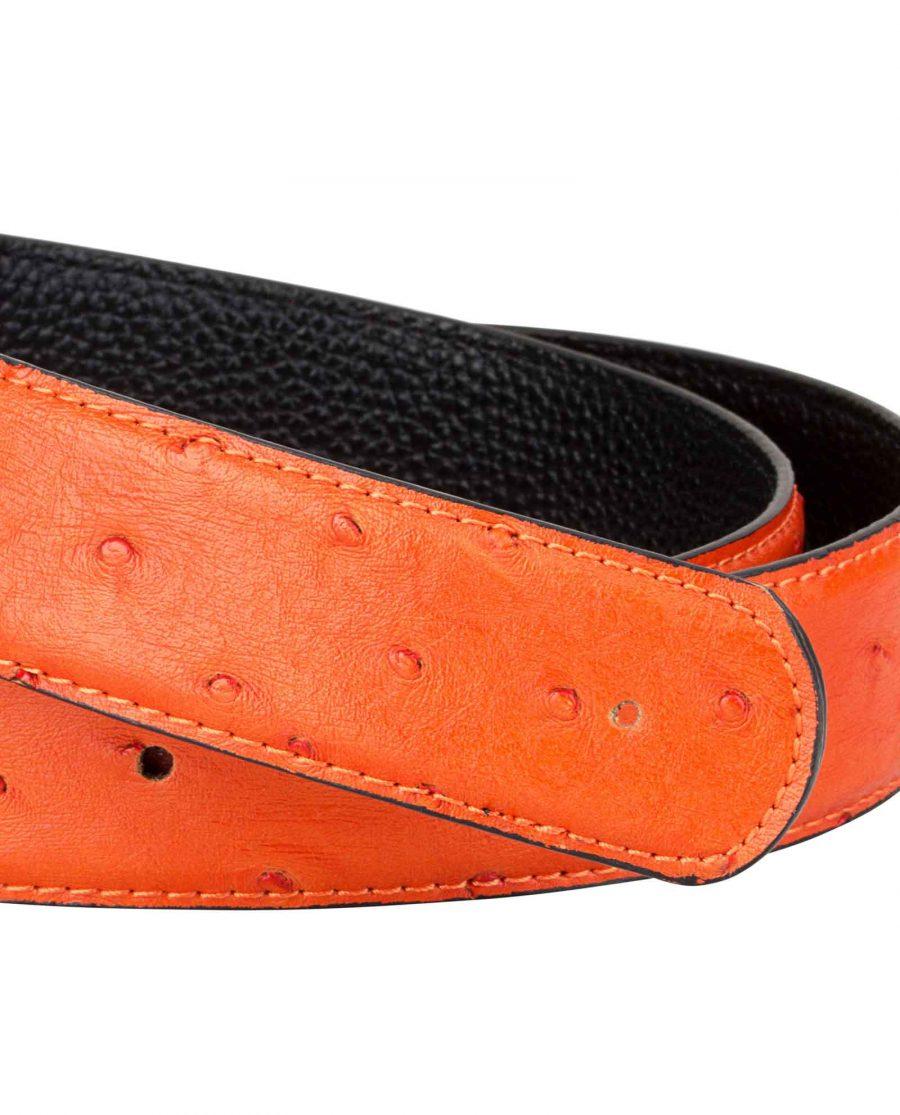 Ostrich-Orange-Belt-Strap-Buckle-mount