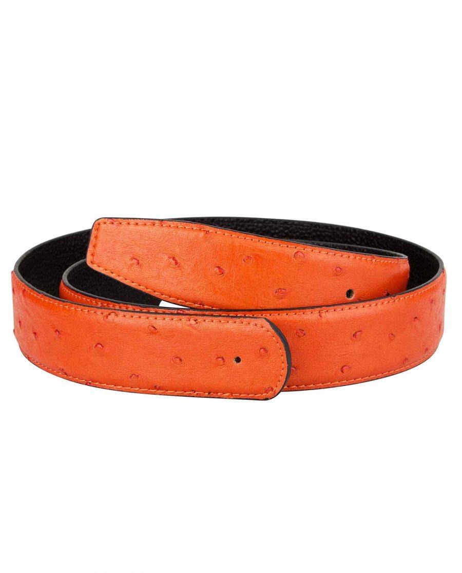 Ostrich-Orange-Belt-Strap-First-image